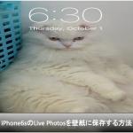 iPhone6sでLive Photosを壁紙に設定する方法