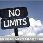 【iPhone】速度制限を対策に必須の通信使用量の見方と確認方法